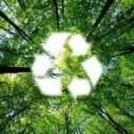 Go Eco-Friendly-thumnail